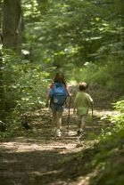 children-hiking-in-the-forest